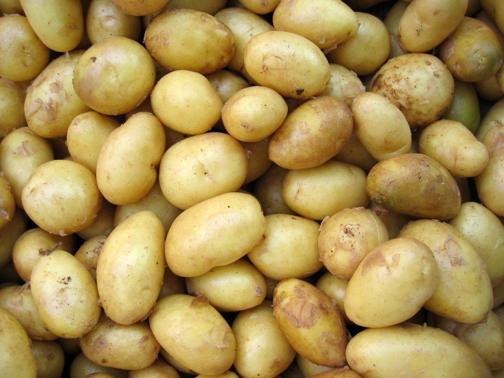 فوائد البطاطا الحلوة للحمل