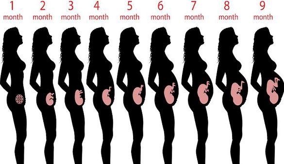 تجنبي هذه اثناء الحمل